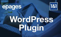 Verkauf von WordPress Plug-ins 1uns1